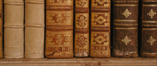 Books in Mafra
