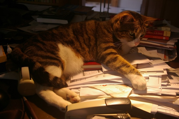 Salieri trying to put some order into the chaos on André's desk