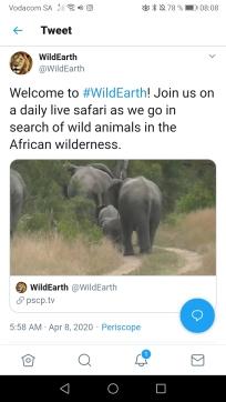 WildEarth4