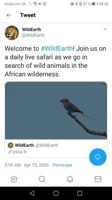 WildEarth7