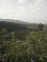Heilfontein10